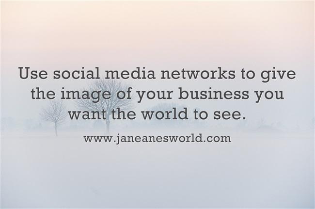 www.janeanesworld.com use social media for business image