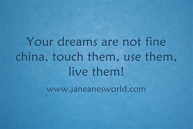 www.janeanesworld.com take action now dream not china