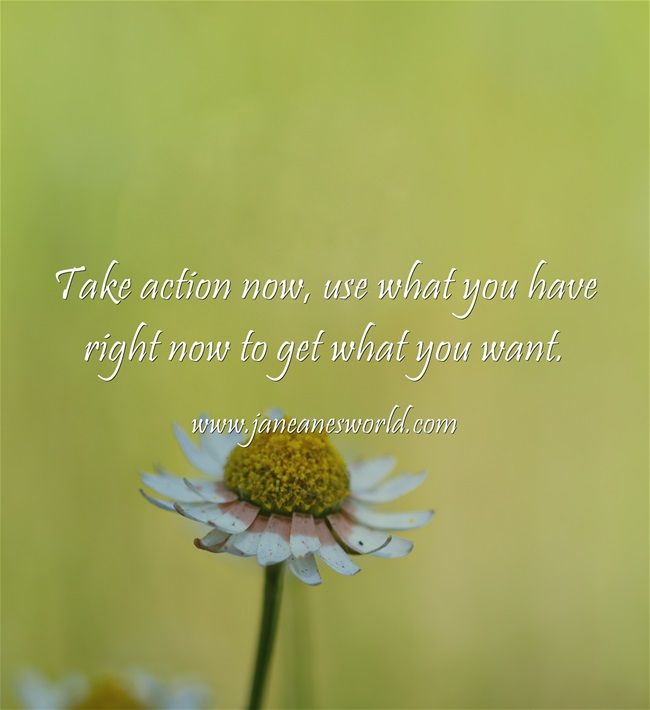 take action now to get what you want www.janeanesworld.com