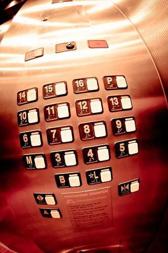 elevator pitch www.janeanesworld.com