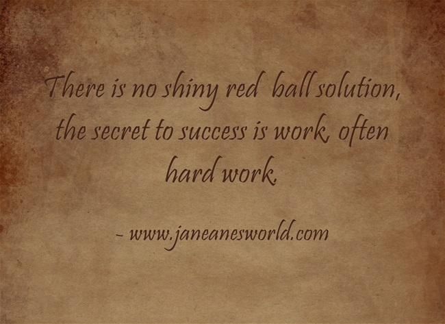 NI SHINY RED BALL www.janeanesworld.com