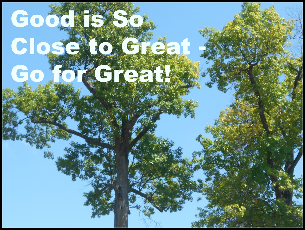 good so close to great - go great