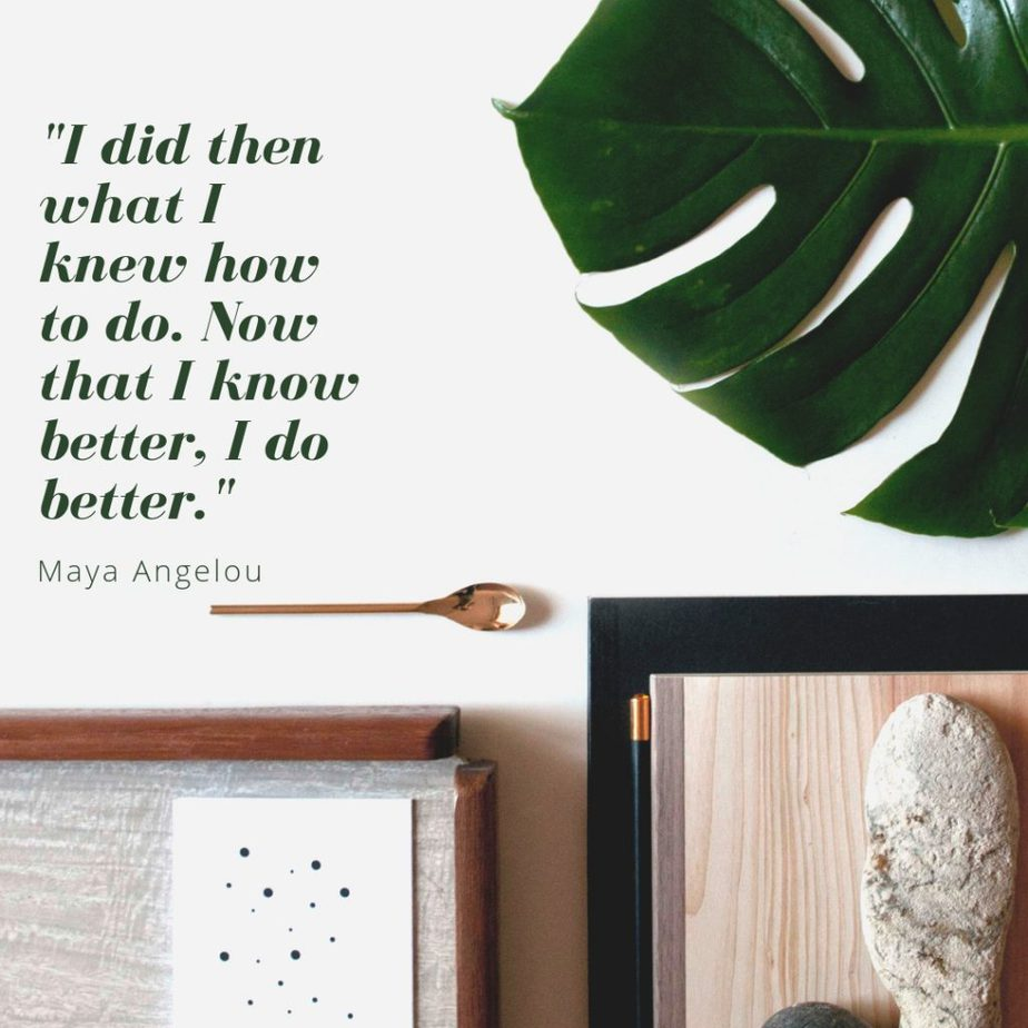"""Never forget, Maya Angelou was correct when she said, """"I did then what I knew how to do. Now that I know better, I do better."""" Also be sure to remember the three lessons for entrepreneurs from this quote: always do your best, work to make your best better, and use what you learn."""