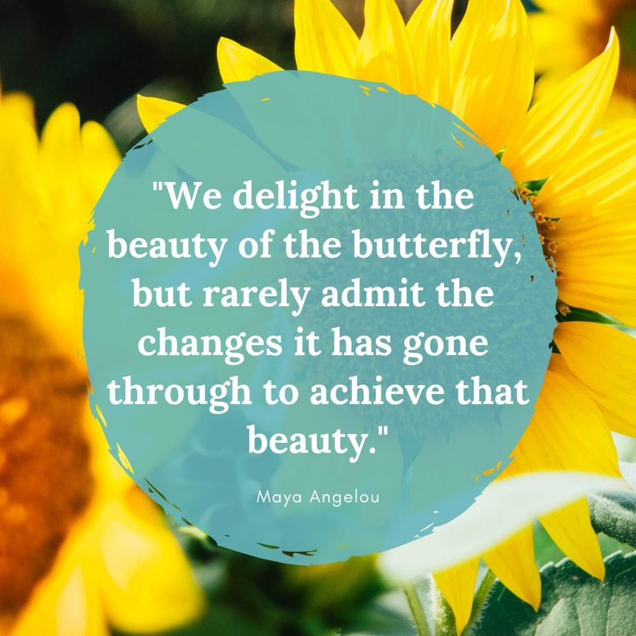 """""""We delight in the beauty of the butterfly, but rarely admit the changes it has gone through to achieve that beauty."""""""