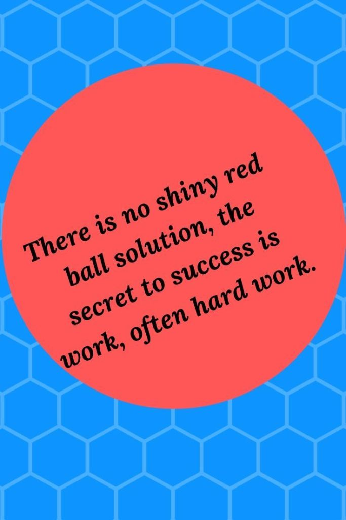 Let today be the day you stop chasing all those shiny red balls and start putting in the work to go from dream to reality.